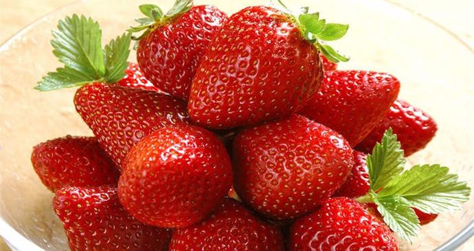 白鹿原神鹿草莓采摘基地