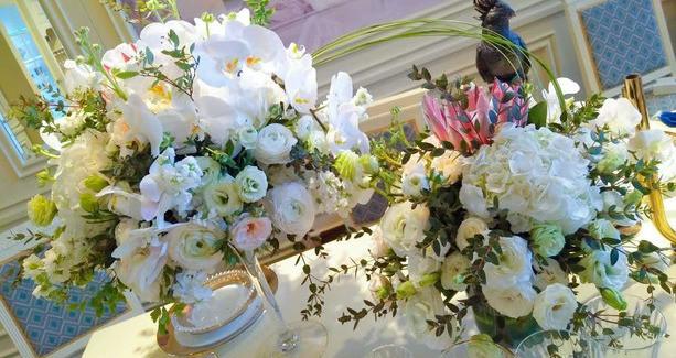 无限美花卉