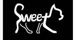 sweetcat宠物猫舍