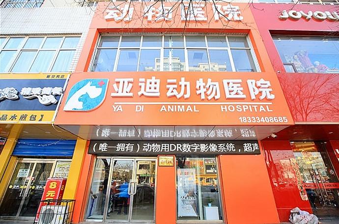 亚迪动物医院