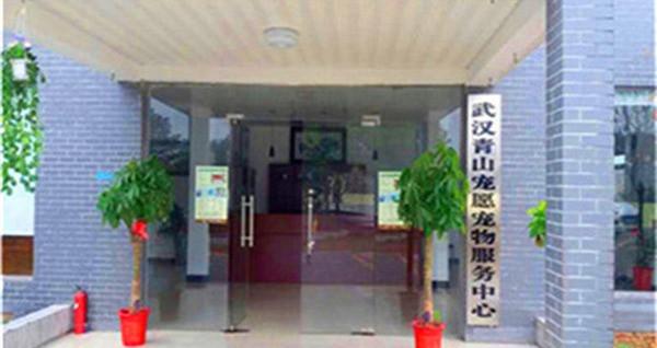 青山宠愿动物服务中心