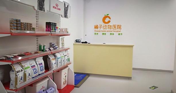橘子动物医院