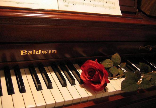 土豆钢琴屋
