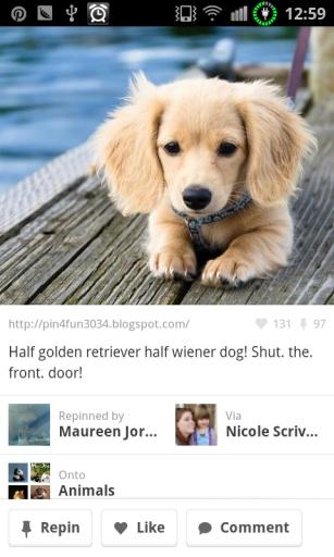 社交图片分享-应用截图
