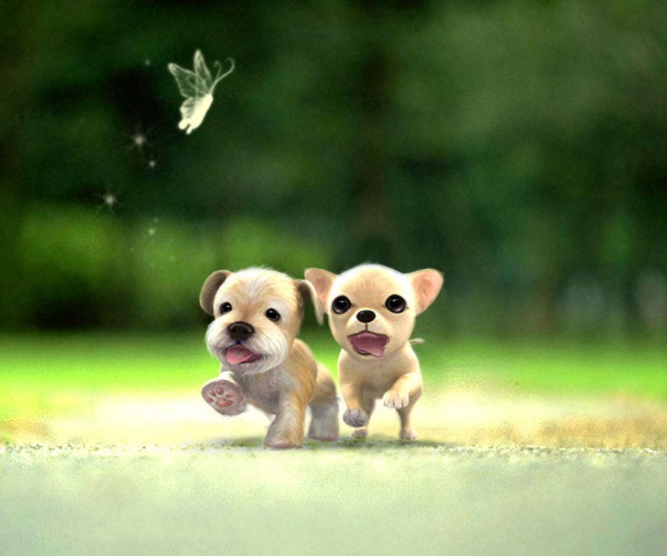 可爱小狗电脑壁纸_可爱泰迪狗狗桌面壁纸图片